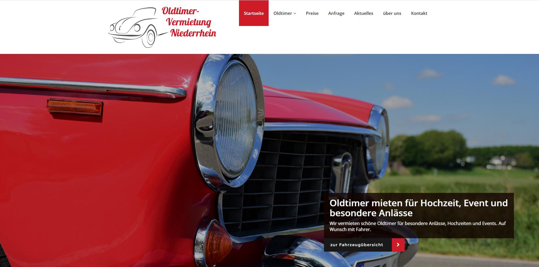 Internetseite in frischem grün mit niedlichen Katzenfotos für eine Katzenpension in Egelsbach